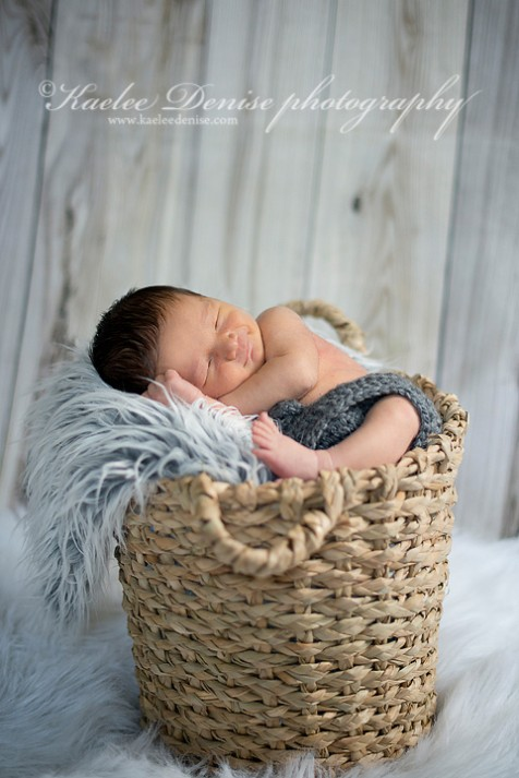 Brevard Newborn Portrait Photographer