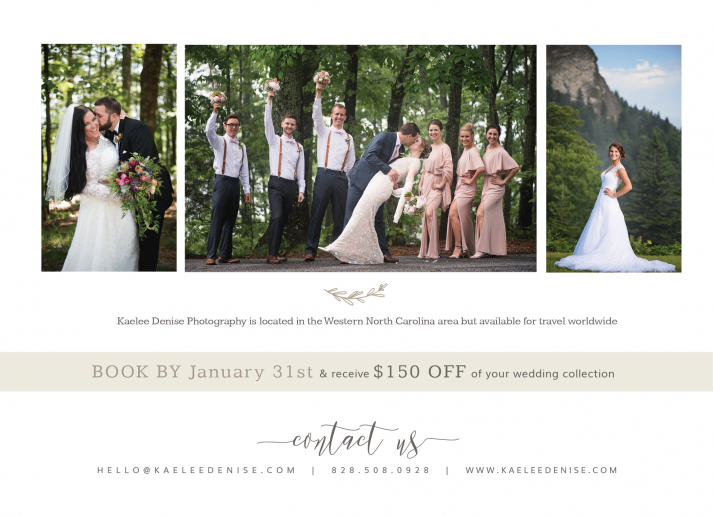 Brevard Wedding Photographer
